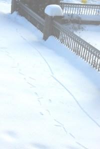 snow_kanji2