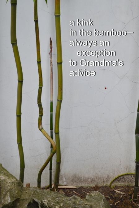 bamboo haiku